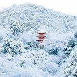 京都の雪はなぜこんなに綺麗なんだろう。【まとめ】