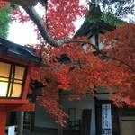 洛西 新古今和歌集でも歌われた、人も少なめの紅葉の穴場「大原野神社」 【紅葉】