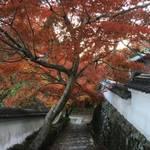 洛西 通称は「花の寺」 紅葉もきれいな「勝持寺(しょうじじ)」【紅葉】