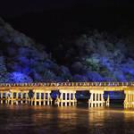 【冬の風物詩】ライトアップされた嵐山を堪能!今年もやっぱり行ってほしい「嵐山 花灯路」