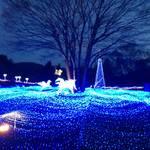 南丹市 るり渓温泉 100万球のイルミネーション「京都イルミエール」【イルミネーション】