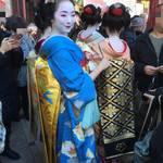 四条南座 舞妓Haaaaan!もズラリ!「吉例顔見世興行」始まる!!【歌舞伎】
