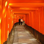 京都の有名神社仏閣で新年の吉凶占う!おみくじいろいろ集めてみました☆【まとめ】