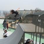 全国でも珍しい本格「スケートパーク」 スケボーを全力で楽しめる! (京田辺市)