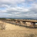 時代劇ロケ地としてお馴染み、八幡市の「流れ橋」が強くなって復活間近!工事は3月末まで!