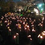 【ライトアップ】今年も始まります!春の夜の祭典「2016京都東山花灯路」【東山】