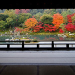 【世界遺産*天龍寺】嵐山を借景とした庭園が四季折々の風景に染まる【まとめ】
