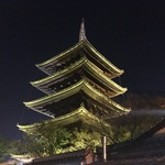 【春の風物詩】東山花灯路は17日まで!圧倒的な美しさ【ライトアップ】