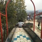 コンパクトなのに充実した遊具がたくさん!「田辺公園 子供広場」(京田辺市)