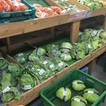 【農家さん直送】地元愛が詰まった農産物がいっぱい♪「朝採り市場」(松井山手)