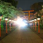 【夜桜】桜の名所「平野神社」で夜桜鑑賞が大盛り上がり!ドンチャン騒ぎ、しっぽり夜桜デート☆あなたならどう過ごす?