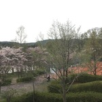 """加茂町散策の休憩にピッタリ!町民の""""憩いの場""""。「塚穴公園」テニスコートもあるよ。"""