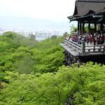 新緑もオススメ!【絶景】緑あふれる「清水寺」