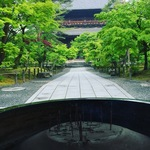 【南禅寺】ぶらり早朝散策☆すっかり緑一色!新緑のエネルギーチャージに行くべき!!【観光】