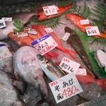 新鮮な魚介類がたくさんの本格お魚屋さん!「大起水産 街のみなと 京都伏見店」
