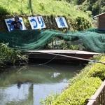 道具なしで渓流釣りが楽しめます!釣れたらその場で塩焼きに♪「大正池渓流魚センター」