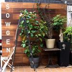 富小路通錦上ル*北白川の人気カフェの2店舗目がオープン「SOWGEN(ソウゲン) antiques-plants-cafe&bar」【開店】