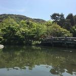 京都市で最も古い公園!春はもちろん四季を問わず風情がある「祇園 円山公園」