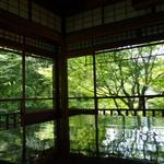 """SNSで話題沸騰~!緑色の海のような """"美しすぎる青紅葉""""「京都 瑠璃光院(るりこういん」)"""
