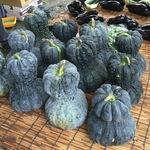 【京都夏の風物詩】毎年恒例鹿ヶ谷かぼちゃ供養!京野菜・鹿ケ谷カボチャを食べて中風まじない【鹿ヶ谷・安楽寺】