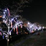 鴨川がライトアップされて幻想的に!京都の夏の風物詩「京の七夕 鴨川会場」