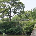 【城郭ファン必見】巨大石垣や水堀がそのまま!!徳川時代のロマン溢れる「淀城跡」