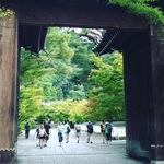 【最新】リアルな京都紅葉情報!始まってます!!紅葉の名所最強スポット☆「永観堂」