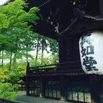 【最新】リアルな京都紅葉情報!こちらも進行中!!観光客少なめ穴場スポット☆「真如堂」
