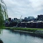 京都のランドマーク的名所!紅葉シーズン直前の風景を見ながら鴨川をぶらり☆