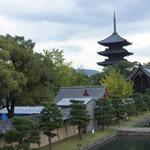 京都のシンボル!紅葉や桜の名所としても人気!一度は行きたい世界遺産「東寺(教王護国寺)」