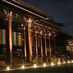【10日まで】初めてにして最高のライトアップ!京都三名閣、飛雲閣は圧巻の美しさ!「西本願寺 夜間公開」