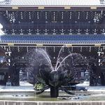 御影堂は世界最大級の木造建築!境内には見どころたくさん!「東本願寺(真宗本廟)」