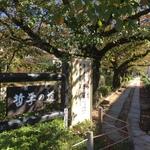 【最新】ぐるっと京都紅葉ダイジェスト!「哲学の道~詩仙堂~圓光寺~曼殊院~修学院離宮」