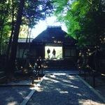 【最新】タイムリーな京都紅葉情報!砂絵も紅葉バージョンに!!鹿ヶ谷「法然院」