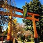 【京都北野】京の名水パワースポットめぐり!桜の名所は名水の名所でもあり☆「平野神社」