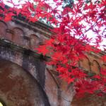 紅葉の名所「南禅寺」の紅葉が見頃に!!境内が赤と黄色で華やかに彩られています☆