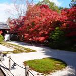 真っ赤な紅葉白砂、緑の苔のコントラストが素晴らしい!何度行っても魅了される美しいお庭「南禅寺の塔頭、天授庵」
