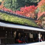 愛宕山ふもと「鮎茶屋 平野屋」今が見頃の紅葉を愛でながらいっぷくを【茶屋】