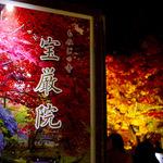 嵐山 花灯路でも特別公開!幻想的なライトアップが美しい「宝厳院(ほうごんいん)」