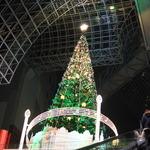クリスマスムードたっぷりの京都駅!今年も巨大クリスマスツリーがお目見えです☆