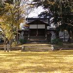 銀杏に覆われてまるで絨毯のように!ウラマヨでも紹介された穴場の「三栖神社」