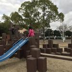 グランドやアスレチックジムで大はしゃぎ!水遊びもできる松井山手の「きんめい近隣公園」
