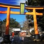 春が待ち遠しい!猛烈寒波で雪化粧の京都桜の名所!!「平野神社」【北野白梅町】