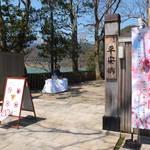 嵯峨広沢「平安郷」桜の見頃に合わせ4/9まで公開延長が決定【一般公開】