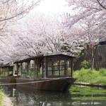 伏見を楽しむ!桜と運河、十石舟による風情ある景色「宇治川派流」