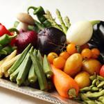 400年の歴史を誇る「樋口農園」の野菜を 存分に味わうスペシャルランチツアー