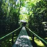 【京都大徳寺】新緑の癒やし空間も改修工事のため見納め!!緑と一体になれる異次元空間「高桐院」