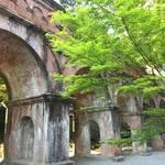 【保存版】京都オススメの癒やされる新緑スポット!紅葉の名所は新緑の絶景スポットでもあり【厳選8ヵ所】