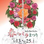 1,200本のバラがお出迎え・綾部バラ園「春のバラまつり」6月25日まで開催中【季節の花】