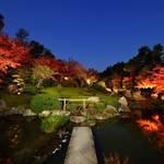 「妙心寺退蔵院」秋のお食事付き特別拝観2017
